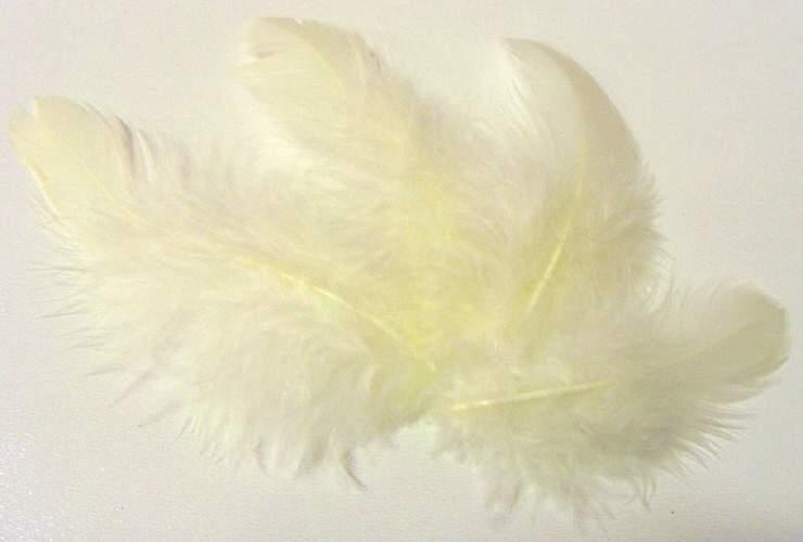 Peříčka VANILKA cca 220ks - 10g