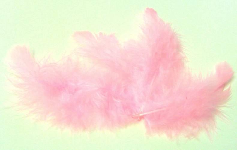 Peříčka růžová cca 220ks - 10g