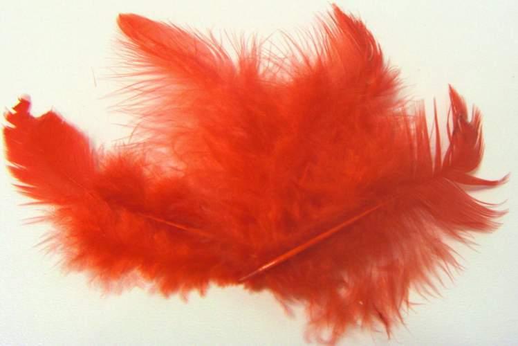 Peříčka červená cca 220ks - 10g