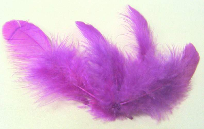 Peříčka světle fialová cca 220ks,10g