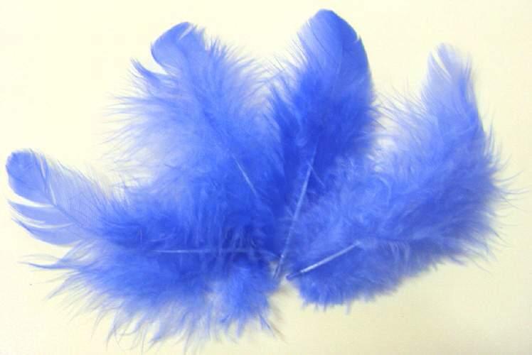 Peříčka modrá 10gr