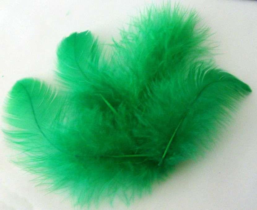 Peříčka tm.zelená cca 220ks - 10g